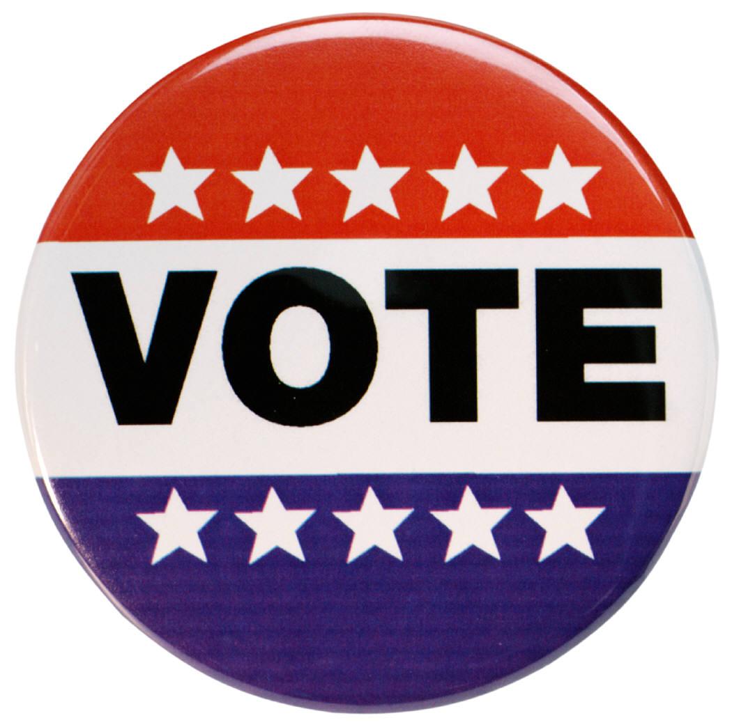 vote2006.jpg